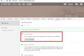 在 Chrome 地址栏快速显示 HTTPS 证书信息